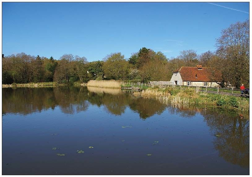 burton mill pond