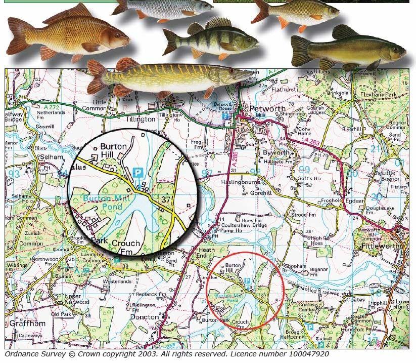 map burton mill pond