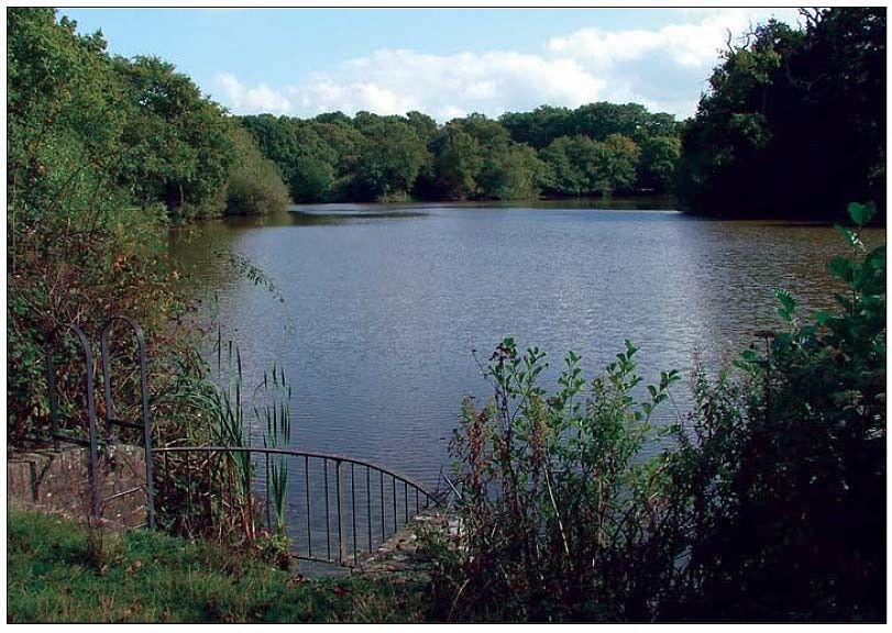 Plashett Lake